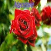 Consultatie met waarzegster Naomie uit Almere